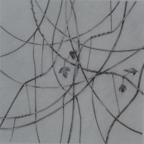 ipomoea diurno 3 28x28Isamat_Artwork